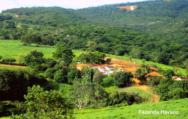Fazenda Havana